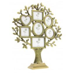 FT23 Drzewko genealogiczne