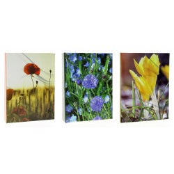 Album DPH4636 Nature 10 x 15 cm 36 zdj.