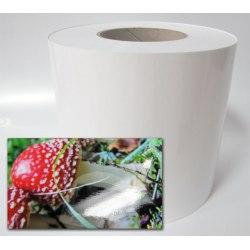 Paper Fuji InkJet 15,2 Glossy 65 m
