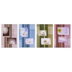 Album MM46100 Flower 5 - 100 zdjęć