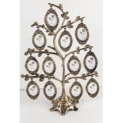 FT02 Drzewko genealogiczne*