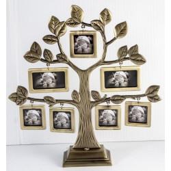 FT09 Drzewko genealogiczne
